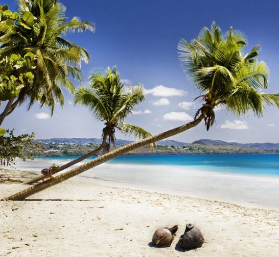 Quel papier d'identité pour la Martinique ?